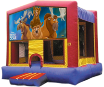 Brother Bear 4 in 1 $435.00 DISCOUNTED PRICE $349.00 + FREE DELIVERY